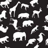 Wild animals seamless pattern Royalty Free Stock Image