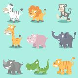 Wild animals seeries Stock Images