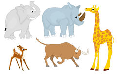 Wild animals set 2. Illustration of isolated wild animals set - elephant, rhinoceros, deer, bull, giraffe Stock Photography
