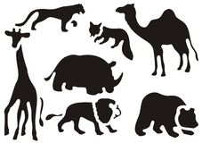 Wild animals set Stock Image