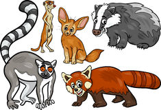 Wild animals set cartoon illustration Stock Image