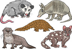 Wild animals set cartoon illustration Royalty Free Stock Photos