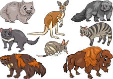 Wild animals set cartoon illustration Royalty Free Stock Images