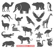 Wild animals set Royalty Free Stock Photography