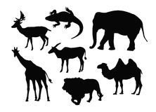 Wild animals silhouette Royalty Free Stock Image
