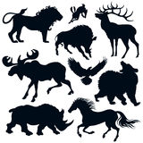 Wild animals. Silhouettes of the wild animals Royalty Free Stock Images