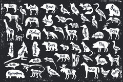 Wild animals  silhouettes with lettering. Bear frog pig wolf mole mouse woodpecker mouse crow elk tiger camel flamingo lion zebra eagle giraffe monkey elephant Royalty Free Stock Photos