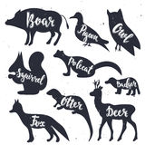 Wild animals silhouettes with lettering. Vector Illustration Royalty Free Stock Image