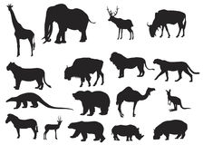 Wild animals various. Vector illustration in silhouette of various wild animals Stock Photo