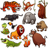 Wild Animals Royalty Free Stock Image