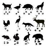 Wild animals vector paw footsteps black silhouette Royalty Free Stock Photography