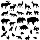 Wild animals vector set silhouettes.  Royalty Free Stock Image