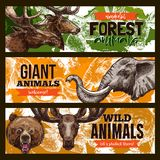 Wild animals vector zoo or save animal banners Stock Image