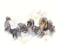 Wild Animals Watercolor Royalty Free Stock Photography
