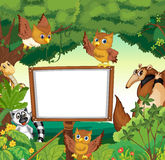 Wild animals and white board in the jungle Stock Image