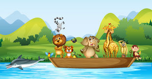 Wild animals on the wooden boat Royalty Free Stock Photo