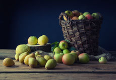 Wild apples and pears in basket.  Stock Photos