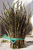Wild asparagus I Royalty Free Stock Images