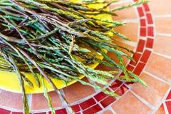 Wild asparagus shoots on yellow plate Stock Photos