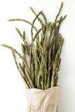 Wild asparagus spears Stock Image