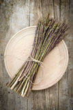 Wild asparagus spears in bunch Royalty Free Stock Photo