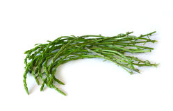 Wild asparagus on white background, isolated Stock Photo