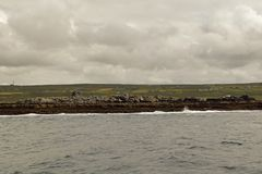 Wild Atlantic Way  Boat trip on the Cliffs of Moher royalty free stock photo