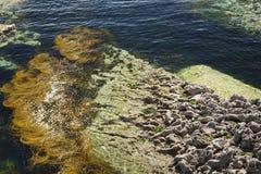 Wild Atlantic Way  St Johns Point stock images