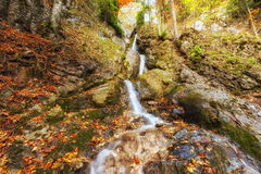 Wild autumn mountain forest with waterfall, nature colorful background Stock Images