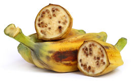 Wild banana of Southeast Asia Stock Photos