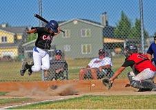 wild baseballting Royaltyfri Fotografi