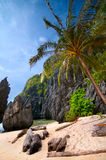 Wild Beach. Exotic Wild Tropical Beach Scenery with Cliffs Stock Photo