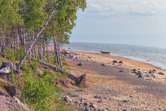 Wild beach of the Baltic sea in spring Stock Image