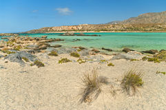 Wild beach at blue lagoon with rocks and plants. Turquoise blue lagoon with rocks and plants at foreground and mountains at background on sunny summer day, Crete Stock Images