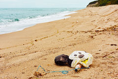 Wild beach with garbage left by holidaymakers in Varna, Bulgaria Royalty Free Stock Images