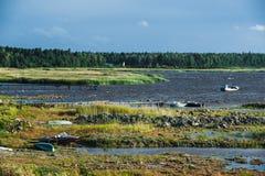 Wild beach on Ladojskoe lake, Russia Royalty Free Stock Photography