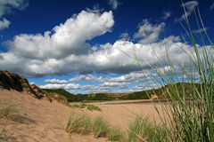 Wild beach landscape. Wide angle shot of dunes, grass, blue sky and white fluffy cumulus royalty free stock photos