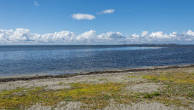 Wild beach in Landskrona 2 Royalty Free Stock Photography