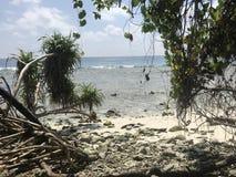 Wild Beach - Maldives Royalty Free Stock Images