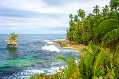 Wild beach Manzanillo in Costa Rica Stock Photography