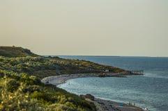 Wild beach Stock Images