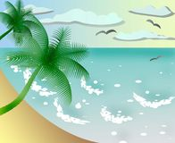 Wild beach with palms illustration Stock Images