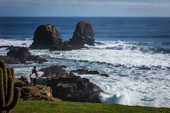 The wild beach of Pichilemu, Chile stock image
