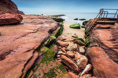 Wild beach and red rock cliffs in site Jurassic Coast in UK Royalty Free Stock Images