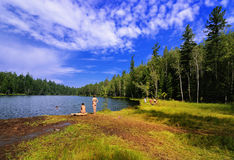 Wild beach on the shore of forest lake Stock Images