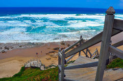Wild beach and stairway Royalty Free Stock Images