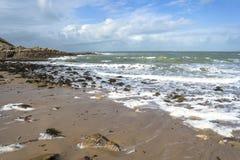 Wild beach Royalty Free Stock Image