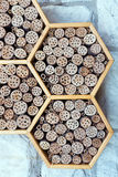 A wild bee hotel Royalty Free Stock Images