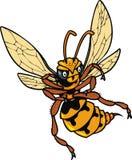 Wild bee Stock Photos