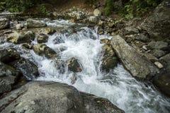 wild bergflod Royaltyfri Foto
